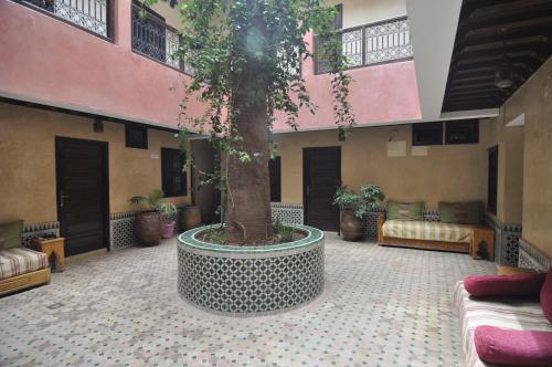 Picture of Hotel Cecil