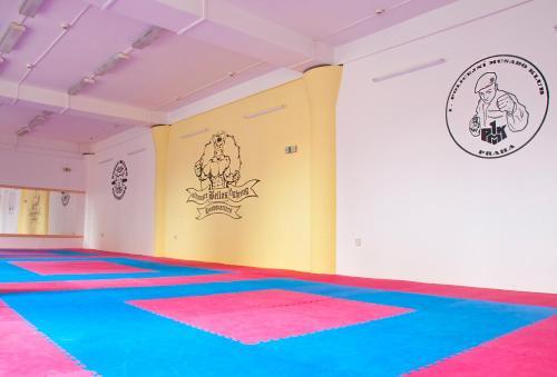 Martial Arts Sleepover Gym