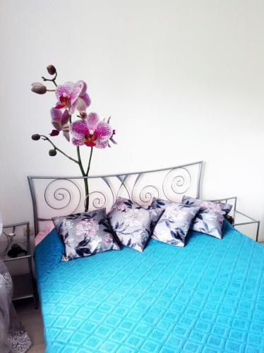 D'Angellis Livaja Apartments
