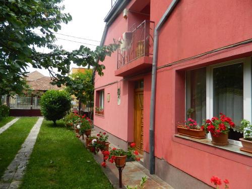 Отель Cazare Vio 0 звёзд Румыния
