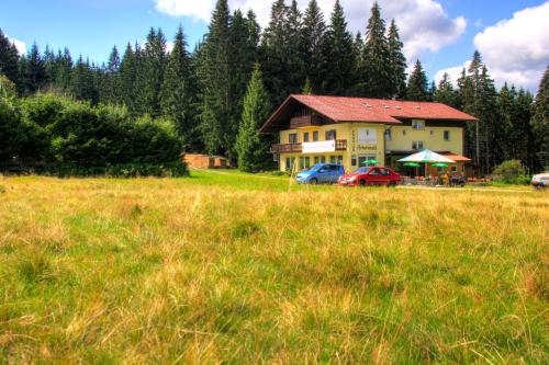 Picture of Pension Arberwald