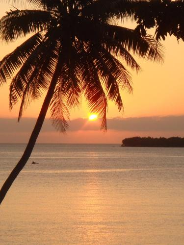 Havannah Blue, Port Vila