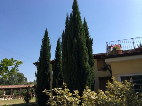 foto Agriturismo Il Mulino del Vescovo (Giano dell'Umbria)