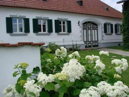 Arkadenhof Kurtz - Apartment