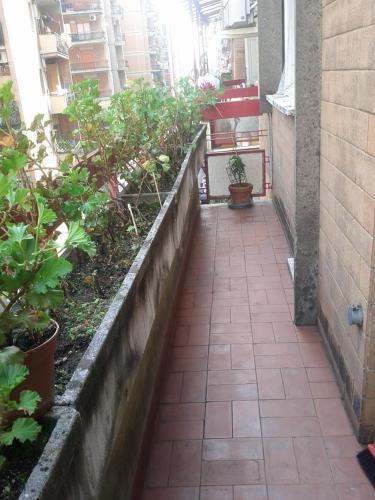 Apartment Rom 1