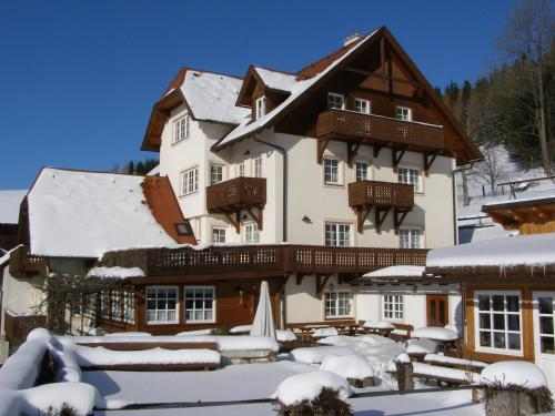 Отель Althammerhof 0 звёзд Австрия