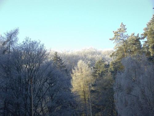 Waldgaststätte Sennhütte