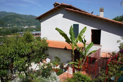 foto Casa Carla (Barga)