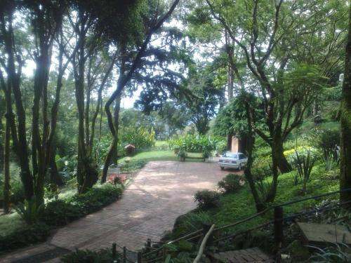 B & B Chalet Santa Eulalia front view