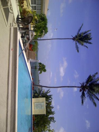 Find cheap Hotels in Cayman Islands (United Kingdom)