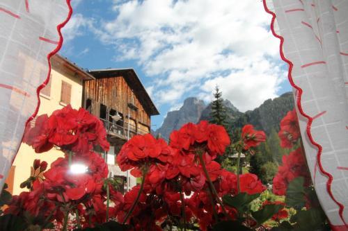 foto Dolomites Holidays (Selva di Cadore)