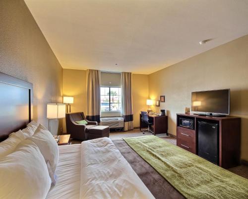 Comfort Inn Edinburg
