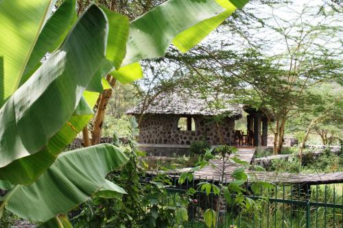 Kiboko Lodge
