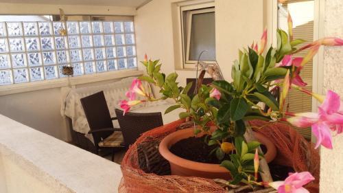 Apartments Sanda Tribunj
