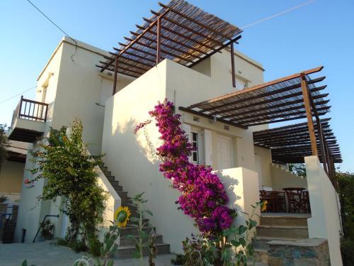 Christina Apartments in Tinos
