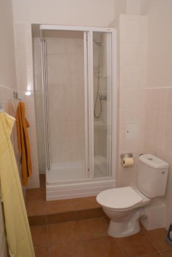 Apartment Havlíckova