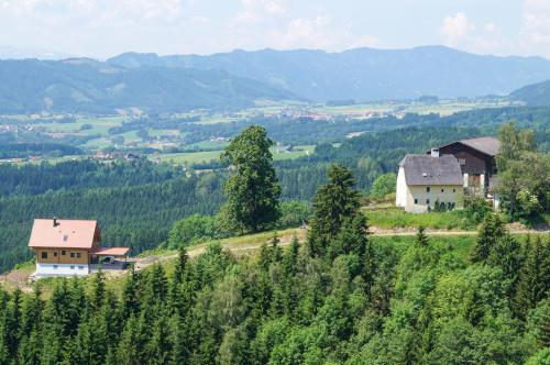 Hochfelner - Stockerhof - Studio mit Balkon