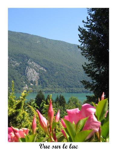 Fleurs du Lac