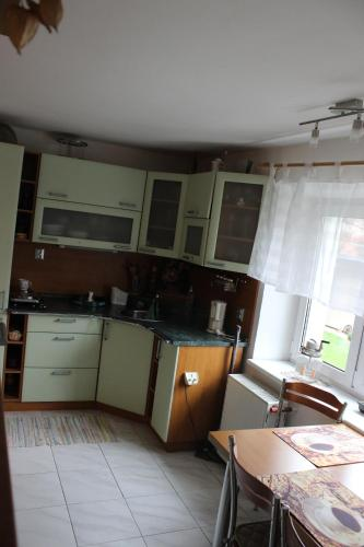 Accommodation Palmetová