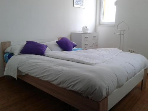 Apartment Mosecka