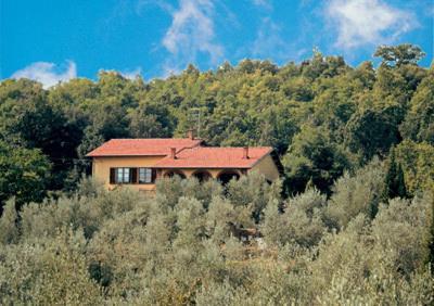 foto Villa Cortona Tuscany VI (Monte San Savino)