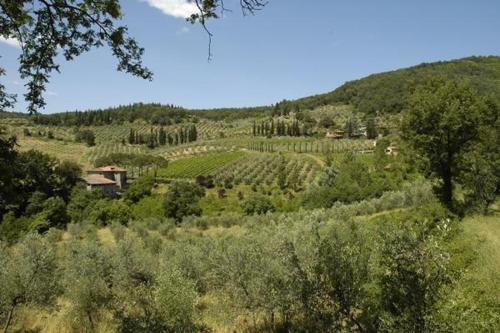 See all 20 photos Apartment in Figline Valdarno V
