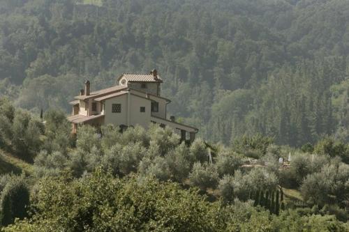 foto Villa in Montaione IV (Montaione)