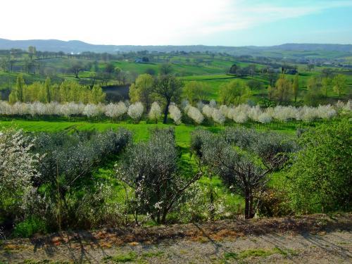 foto Poggio Neriolo (Giano dell'Umbria)