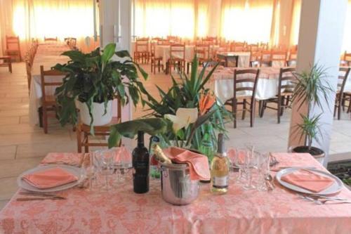 foto Agriturismo Eucalipto (Casa del conte (Montecorice))