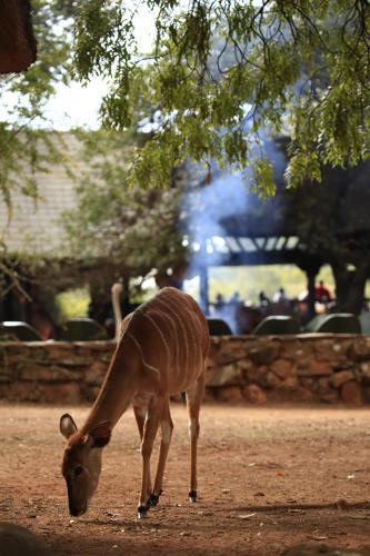 Mlilwane Wildlife Sanctuary, Lobamba