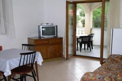 Apartment in Petrcane Dalmatia III