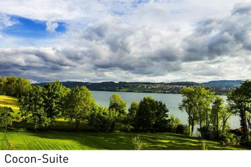 Apartmá typu Junior s výhledem na jezero (Junior Suite with Lake View)