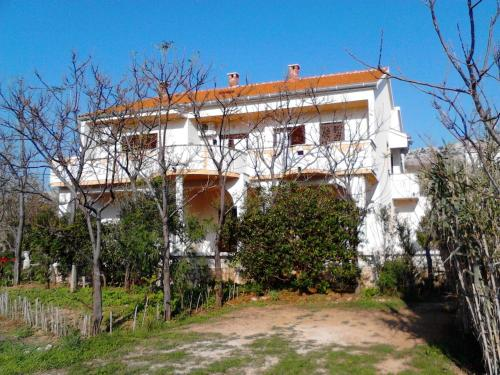 Apartments Kre�imir
