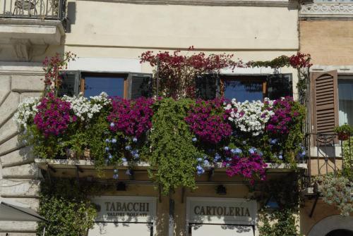 Navona In Fiore Luxury House