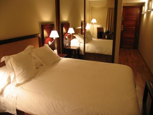 Habitación Doble - 1 o 2 camas Hotel Boutique & Spa El Privilegio 1