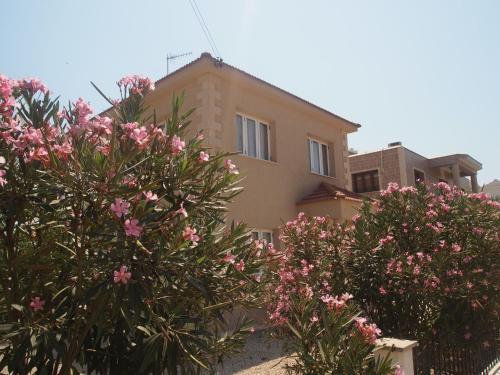 Sunny Cyprus Villa