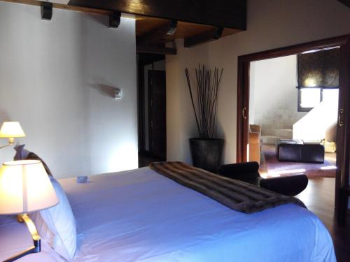 Suite Hotel Boutique & Spa El Privilegio 11