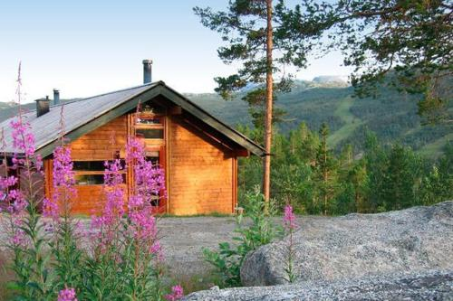 Three-Bedroom Holiday home in Hovet