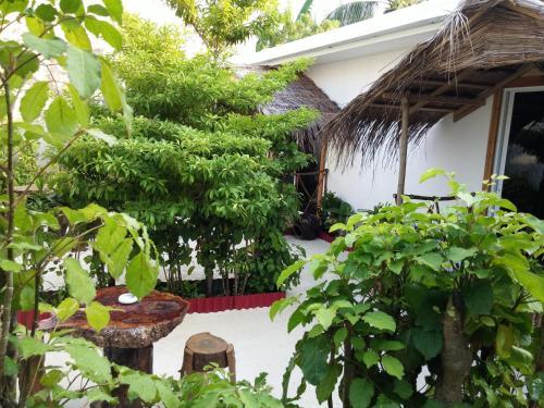 Maafushi View, Maafushi