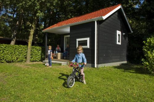Picture of Vakantiepark De Reebok