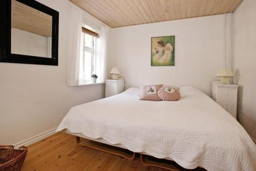 Three-Bedroom Holiday home in Øster Assels 2