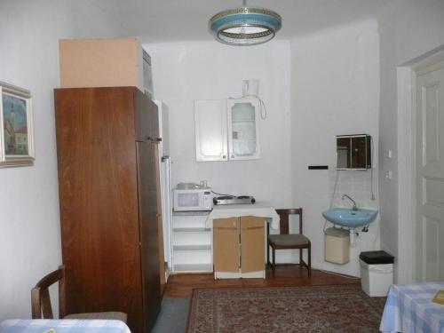 Apartment Trojska