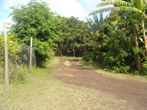 Tourvarua