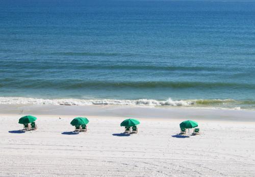 Ft Walton Beach Hotels Beachfront Pet Friendly