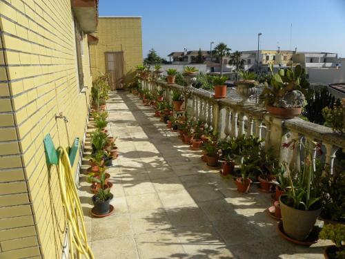 foto Casa Vacanze Ciccio (Palmariggi)