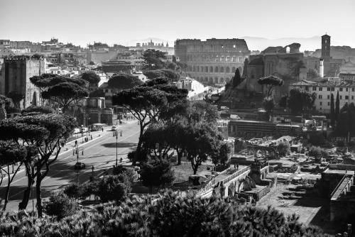 La Cupola del Vaticano - image 10
