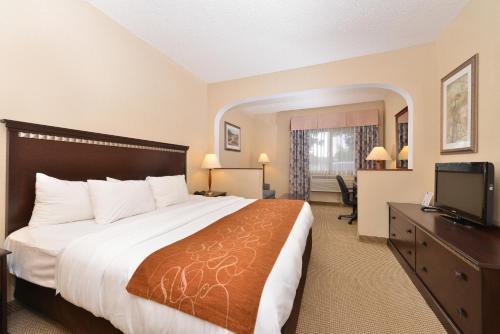 Quality Inn & Suites Denver North-Westminster