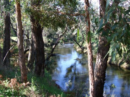 Picture of Nannup Riverview Cottage