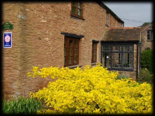 Manor Farm,Bridgwater