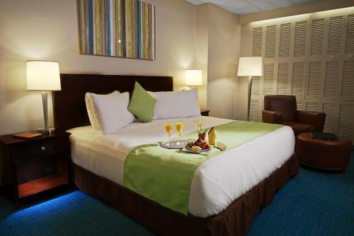Miami International Airport Hotel FL, 33266